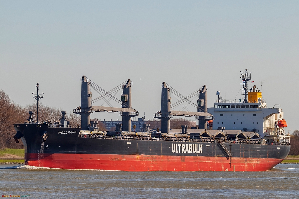 Wellpark   -   IMO nº 9668556