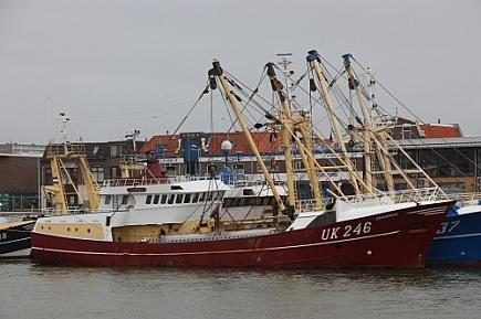 UK-246 Concordia