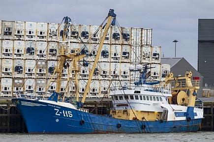 Z-115 Antje de Vries   -   IMO nº 8812760