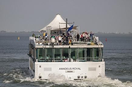 Amadeus Royal