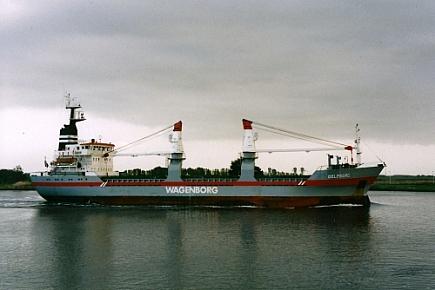 Delfborg
