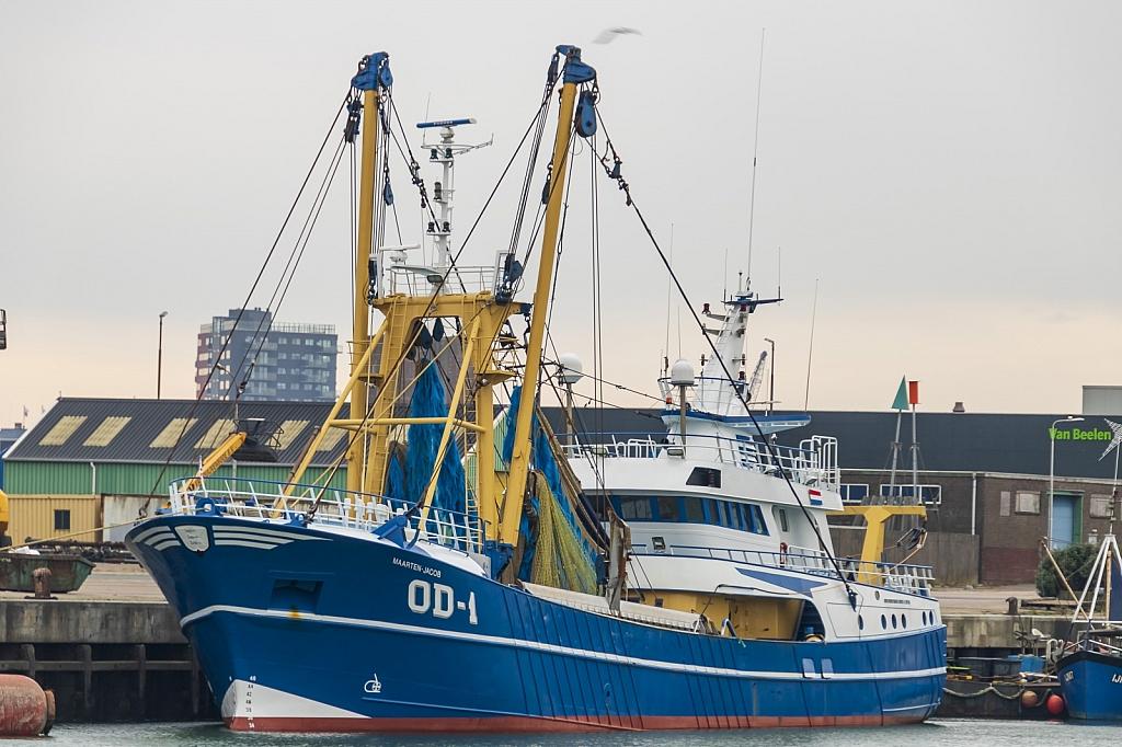 OD-1 Maarten Jacob   -   IMO nº 9242754