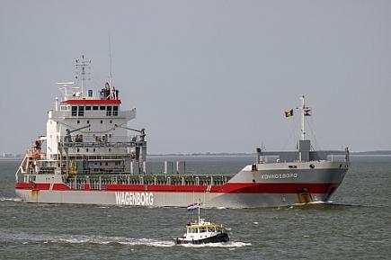 Koningsborg