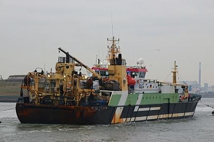 Helen Mary ROS-785