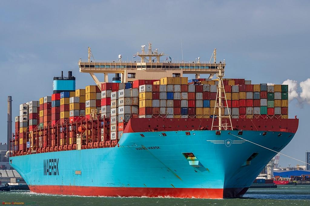 Maribo Maersk   -   IMO nº 9619969