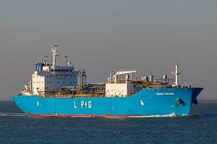 Desert Orchid - IMO n°  9798167